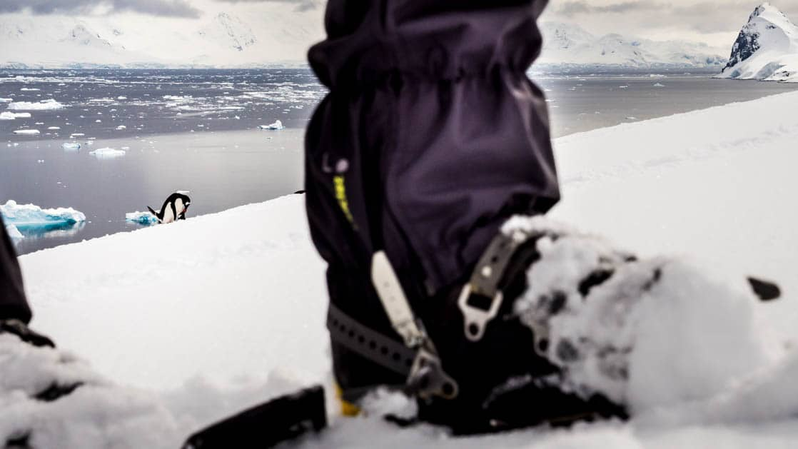 close up of adventure traveler's foot wearing crampons standing on the snow on an overcast day in antarctica