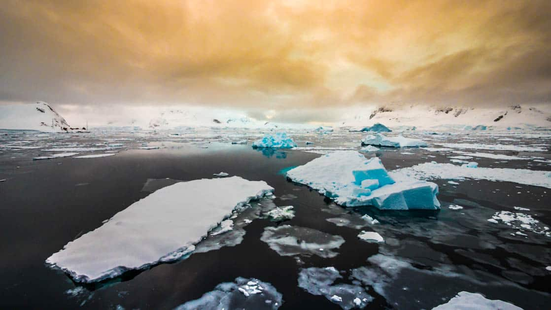 group of icebergs atop a dark antarctic ocean with a yellow cloudy sky above