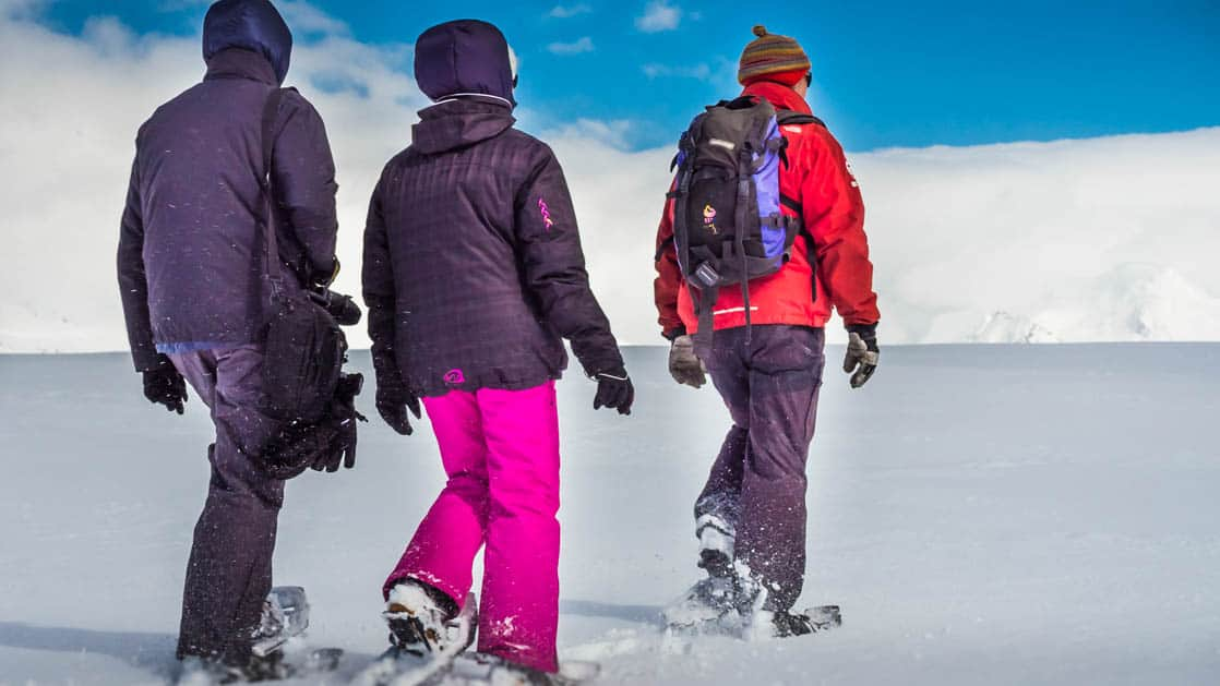group of antarctica basecamp travelers snowshoeing on fresh snow on a sunny day