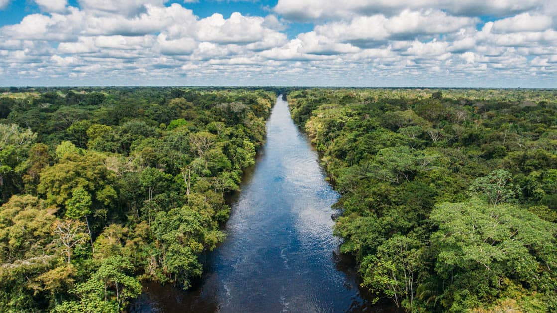 looking down the amazon river with jungle on either side on a sunny day
