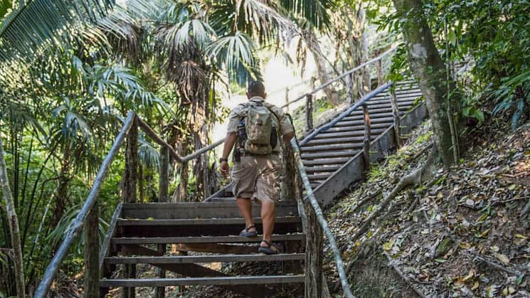 A Belize traveler walking up a set of stairs in the jungle.