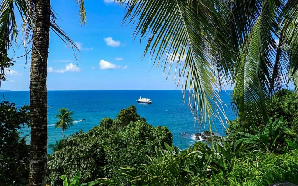 looking through a jungle canopy and palm trees at the safari voyager small ship sitting in the middle of the calm caribbean ocean on a sunny day