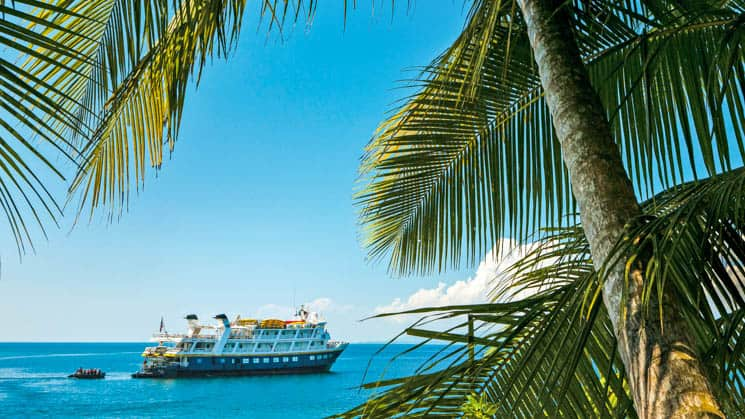 national geographic costa rica small ship cruising on a sunny day with palm fronds in the foreground