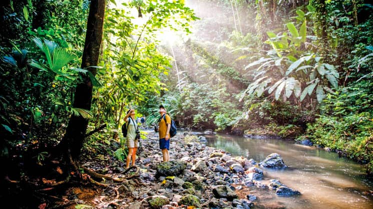 Travelers hiking on a costa rica jungle tour in Corcovado National Park with a stream next to them and sunbeams coming through the green canopy