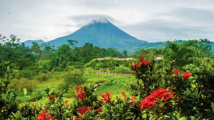 overlooking lush green costa rica jungle with red flowering plants in the foreground and arenal volcano in the distance
