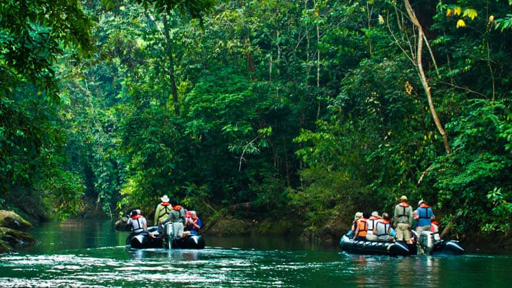 adventure travelers in zodiac boats cruise down a jungle river in corcovado national park in costa rica