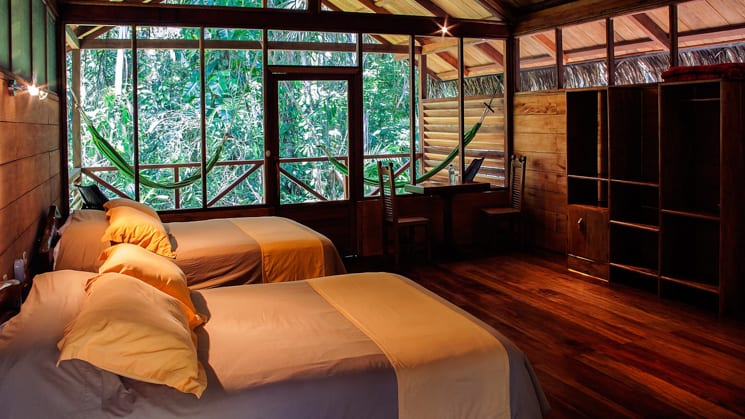 luxury room with twin beds and glass wall looking into the jungle at sacha amazon eco lodge