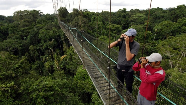 adventure travelers standing on the sky bridge above the jungle canopy taking pictures at sacha amazon eco lodge