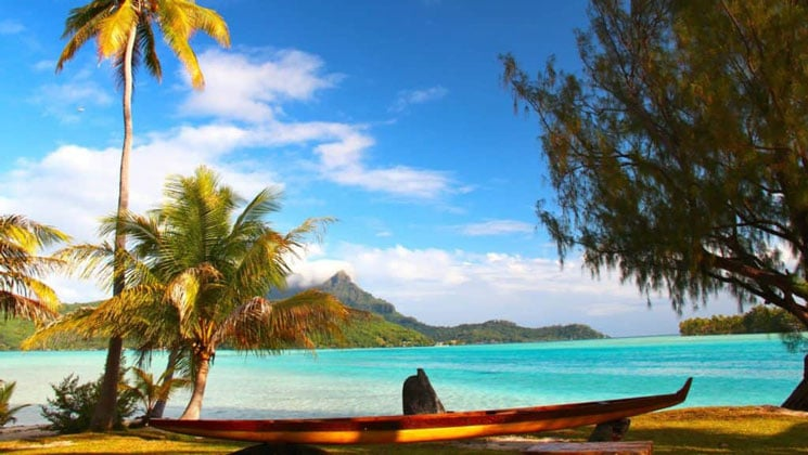 A Palm tree and wooden boat on a sandy beach in tahiti with water water and green mountains behind