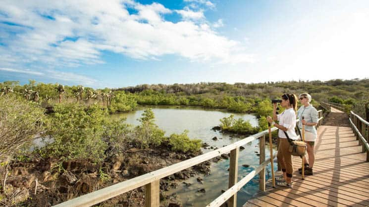 adventure travelers take pictures from a walking bridge overlooking water and jungle of the galapagos