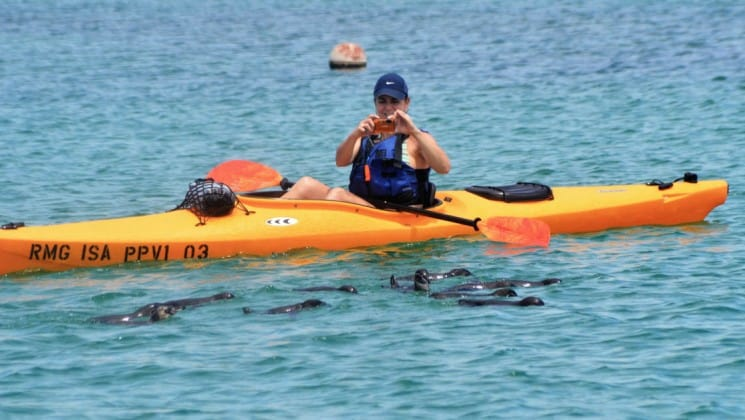 galapagos traveler taking pictures of sea lions swimming around her from an orange kayak