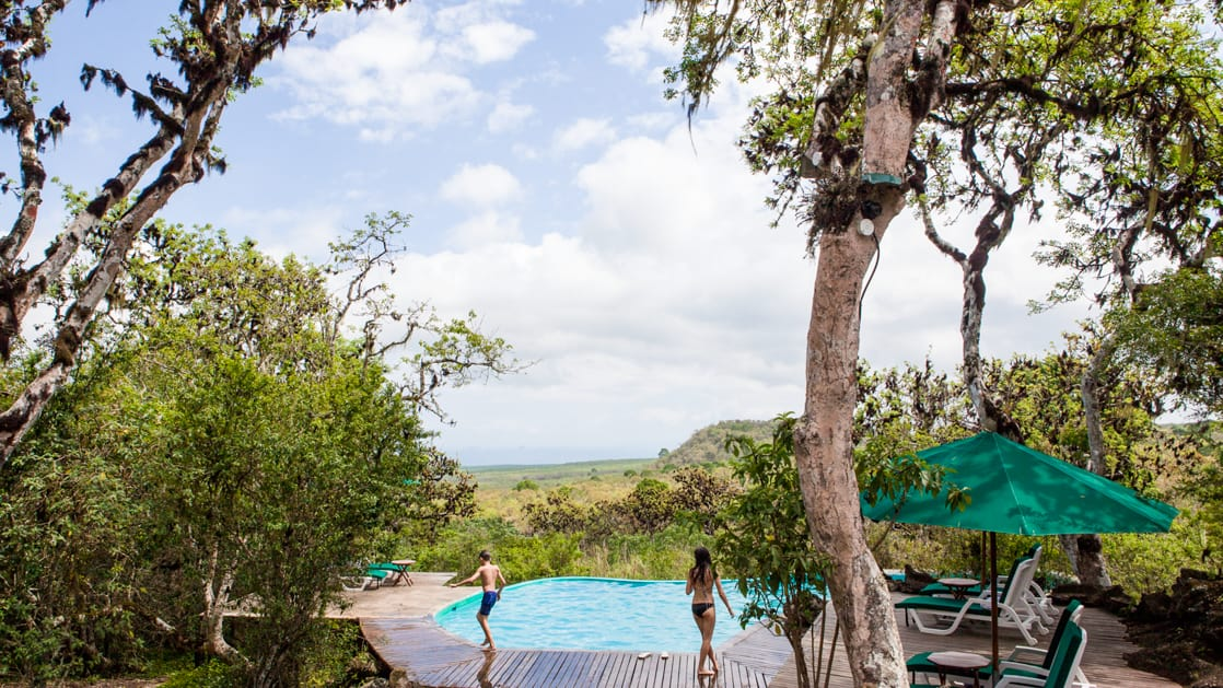 adventure travelers walk around a pool with the jungle surrounding it at galapagos safari camp