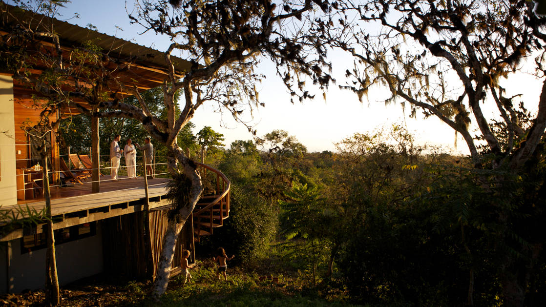 a bungalow at galapagos safari camp with foliage around them during a clear morning sunrise