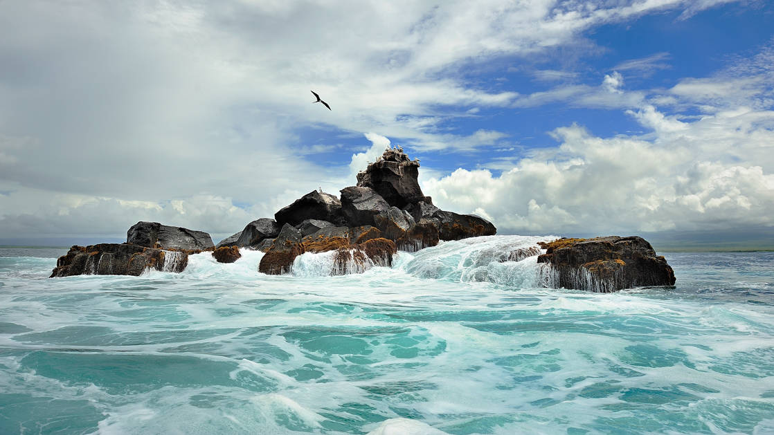 turquoise ocean surrounds rocks sticking out of it on a partly cloudy day as a galapagos seabird flies above