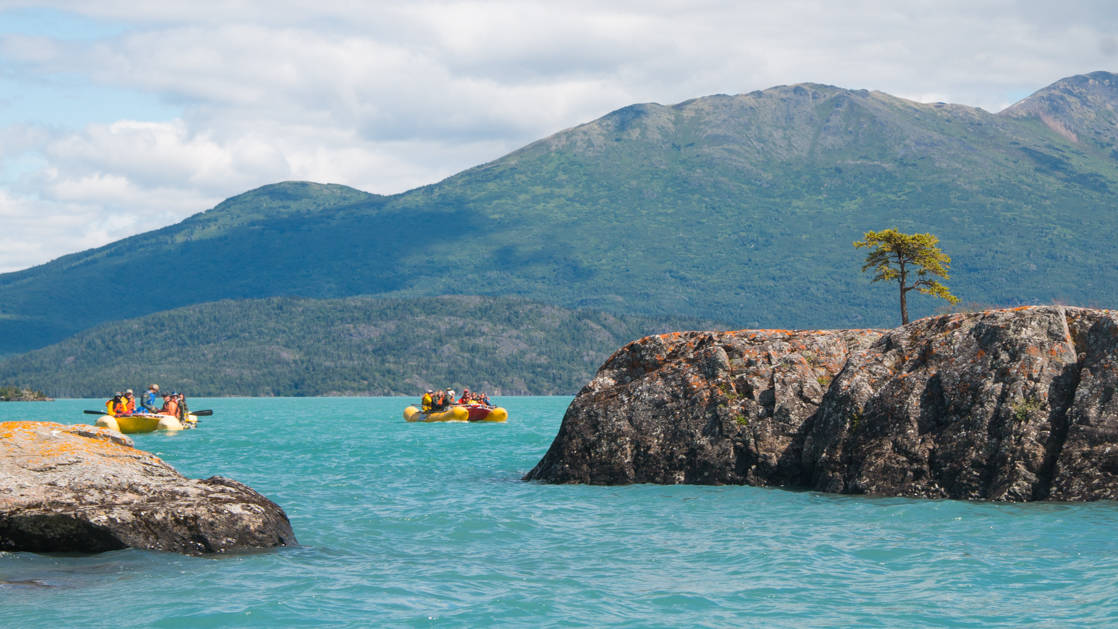 kayakers in the green waters of alaska with a rocky coastline on both sides