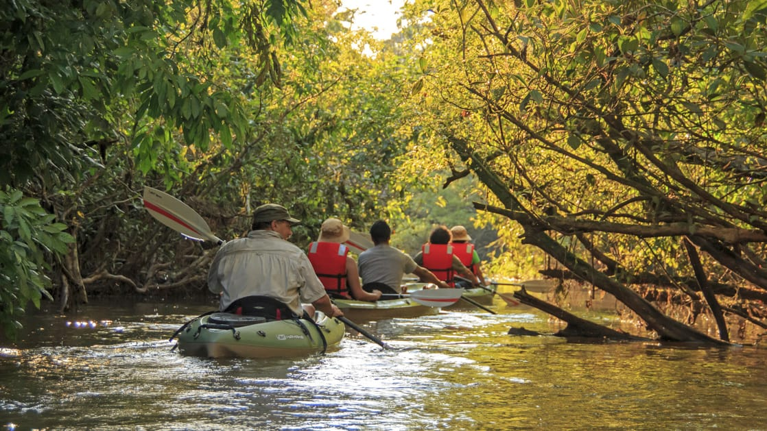 Small ship cruise passengers on a kayak excursion in the ecuadorian amazong paddling down a narrow stretch of river lined with trees on both sides