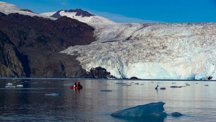 kayakers float on calm waters in front of a glacier in alaska on a sunny day