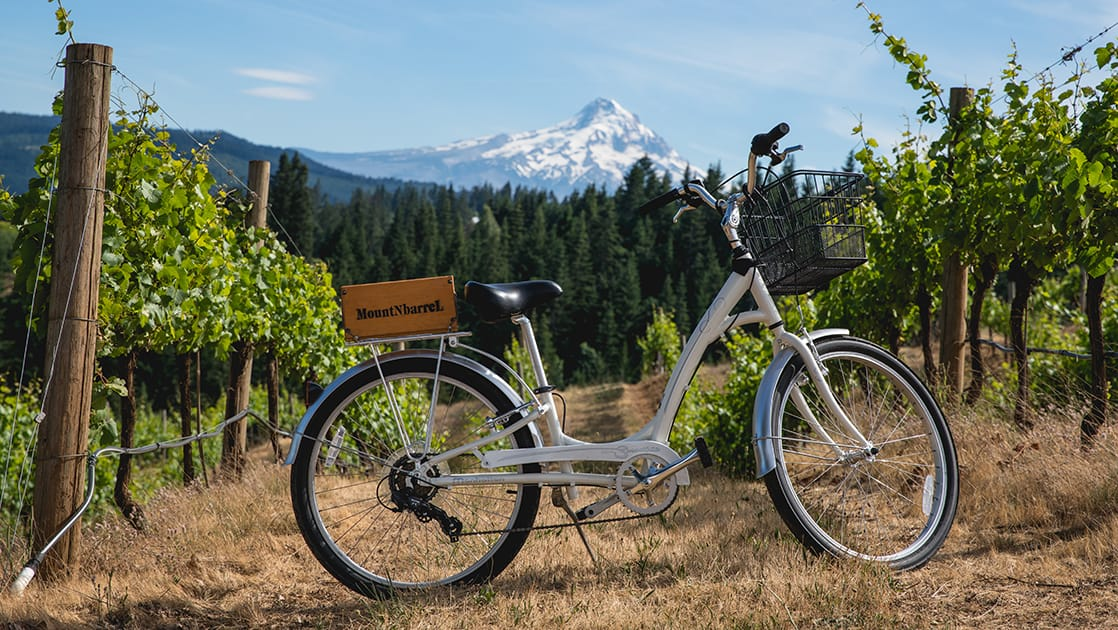 White townie bike with wooden wine box over the rear wheel, standing in a vineyard with a snowy mountain in the background, on a sunny day during the Rivers of Wine small ship cruise.