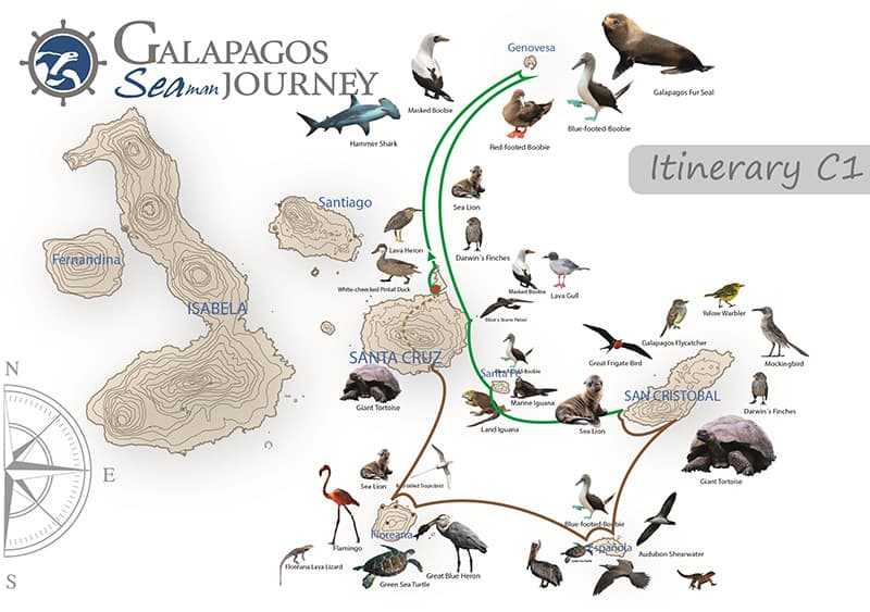 Galapagos cruise route map showing visits to Baltra, Seymour, Genovesa, Plazas, Santa Fe, San Cristobal, Espanola, Floreana and Santa Cruz islands.