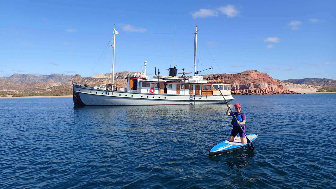 a woman on a paddleboard smiles while floating in front of the westward baja california small ship on a sunny day in the sea of cortez
