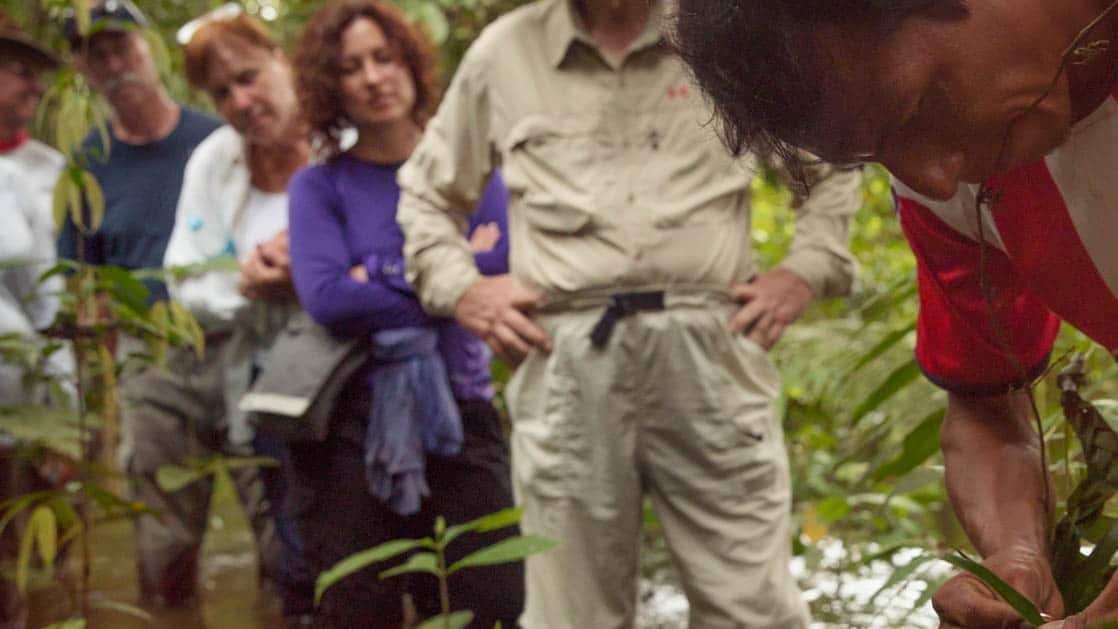 guide showing his group plants in the peruvian amazon rainforest