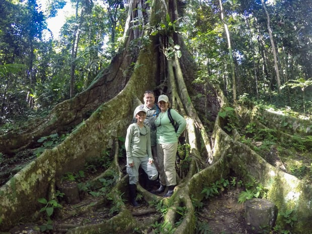 Family in front of the giant roots of a tree in the Amazon forest.