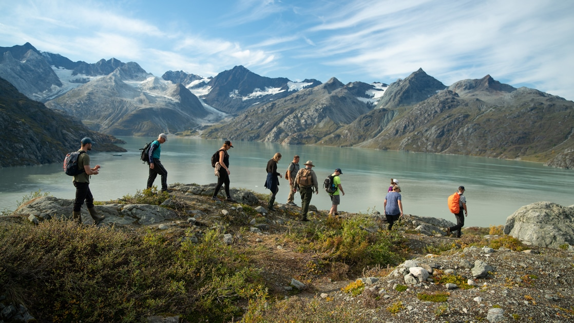 Surrounded by a jagged mountain range a group of cruise guests and a forestry ranger hike the ridgeline above Lamplugh glacier in Alaska.