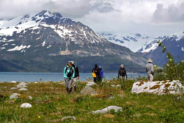 Guests from their small ship cruise walking on tour in Alaska.