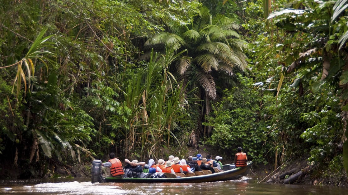 skiff with cruise passengers on a river excursion in the ecuadorian amazon