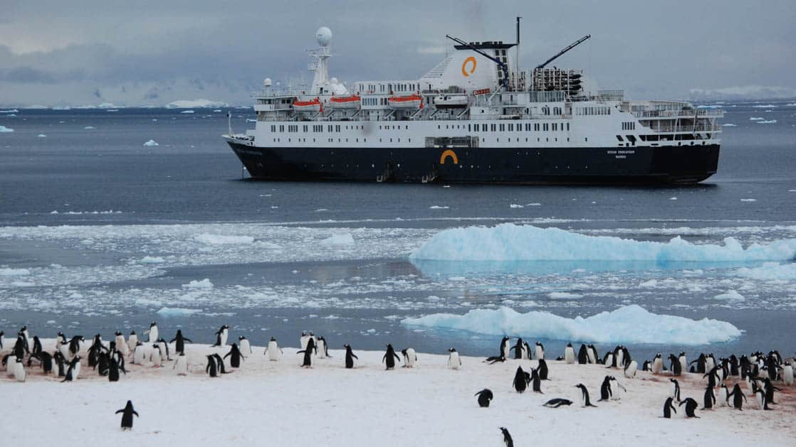 ocean endeavour expedition ship cruises in antarctica with icebergs in front of it and a group of penguins on shore in the foregournd