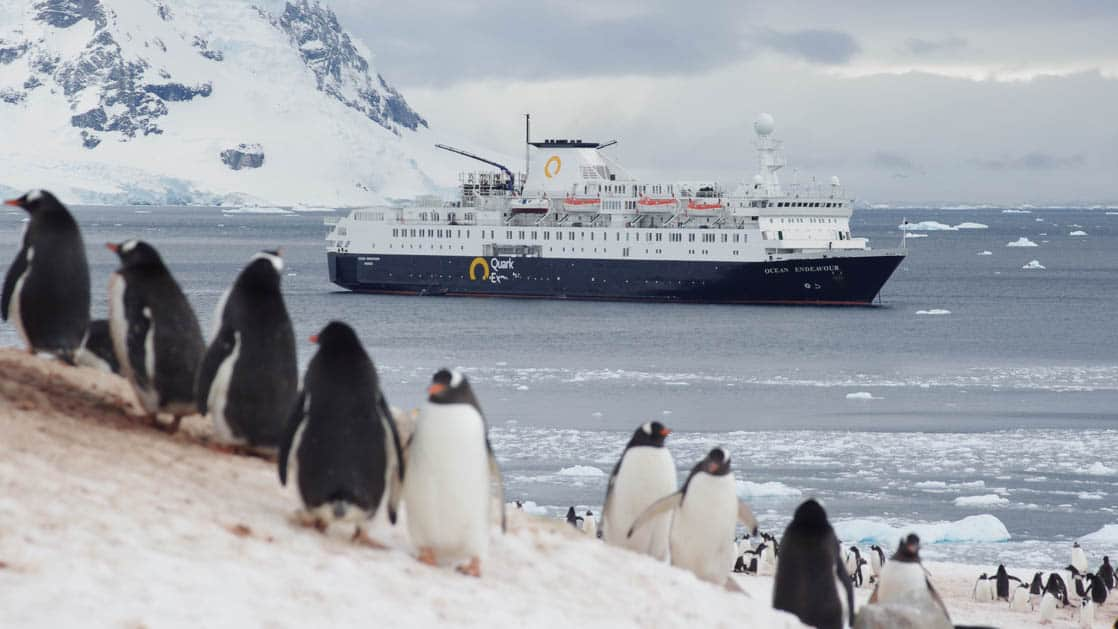 penguins walk on snowy ground with an antarctica expedition ship in the background and a large mountain in the distance