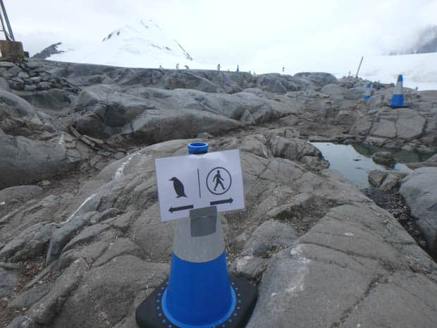Sign guiding small ship passengers around the penguins in Antarctica.