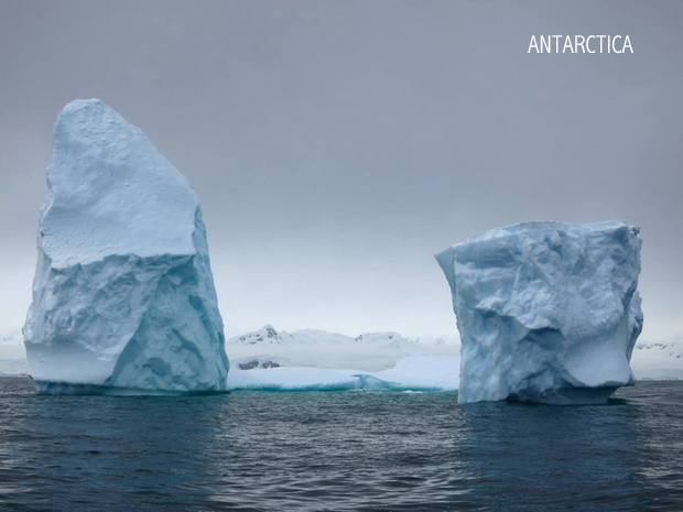 Two standalone icebergs in Antarctica on an overcast day