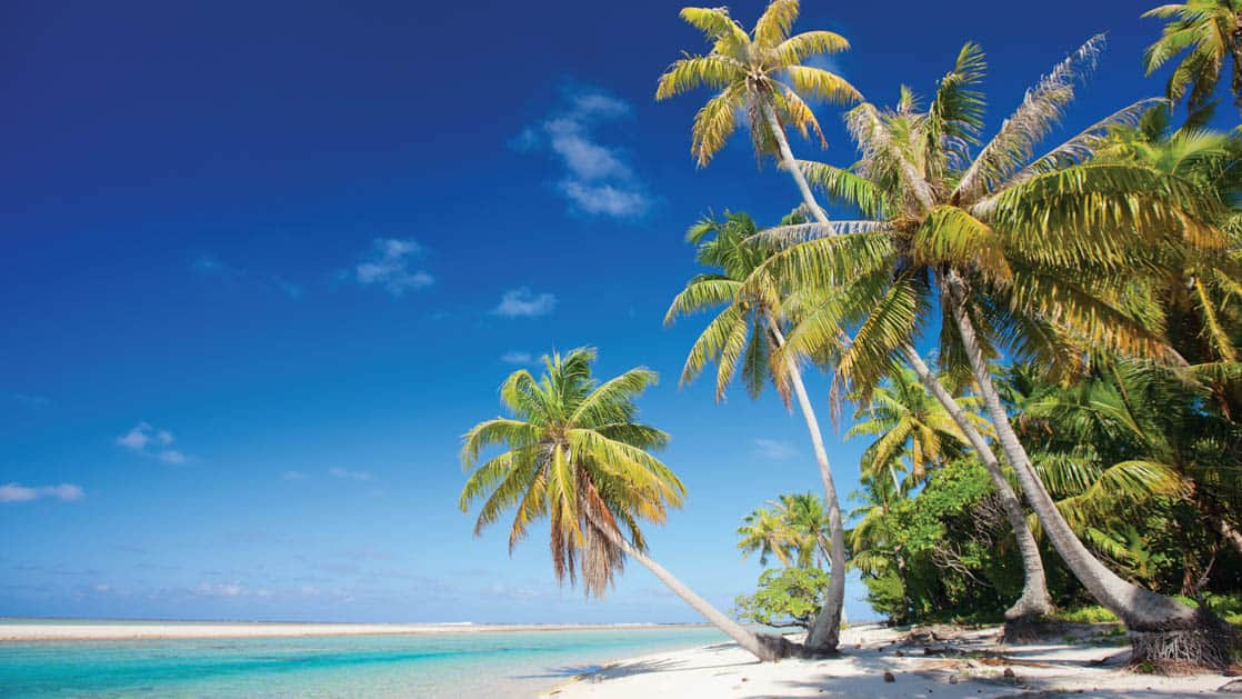 Beautiful white sand beach with palm trees jutting out over turquoise water in the Pacific Islands