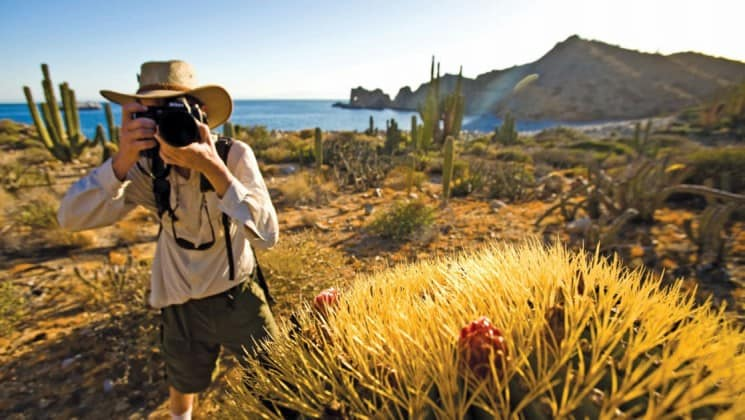 man photographing cactus on shore excursion from baja among the great whales small ship cruise