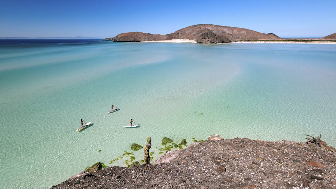 aerial view of three stand up paddle boarders along the coastline of baja california with clear blue water