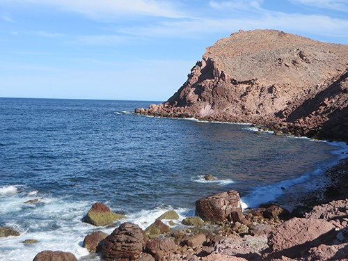 sunny day in magdalena bay baja california with water lightly washing against a rocky shoreline