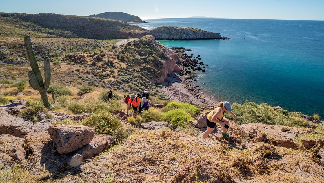 A group of hikers make their way to the top of a hillside overlooking the deep blue peninsula coastline of Baja's sea of Cortex below.