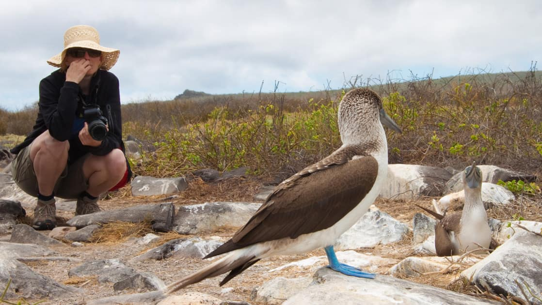 a woman with a hat crouches low to get a good look at the blue footed booby standing on rocks in front of her at the Galapagos islands