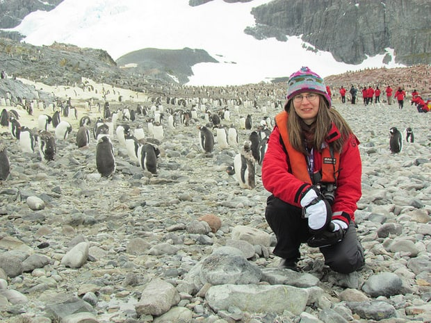 Small cruise ship guest kneeling on the ground next to penguins in Antarctica.