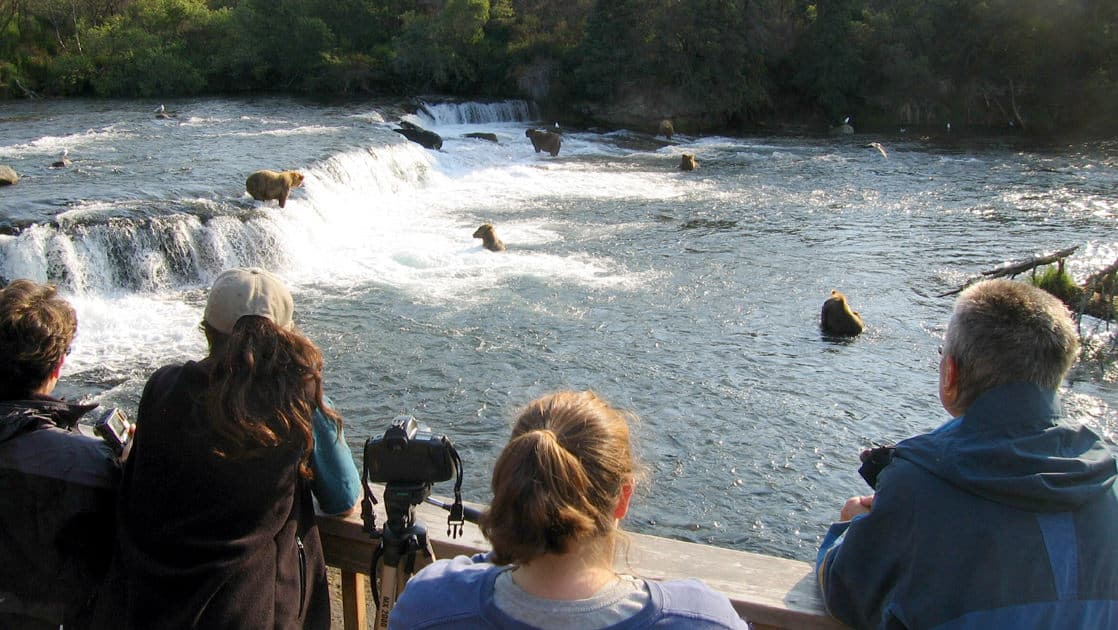 Group of people observing the bears fishing from the viewing platform at the brooks wilderness lodge in katmai alaska