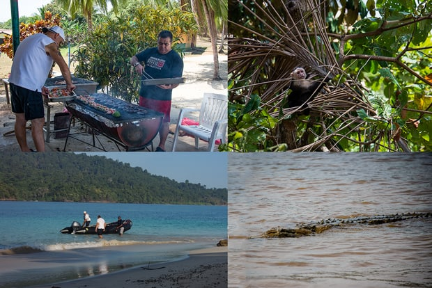 Small ship cruise staff setting up for a bbq, spider monkey playing in a palm frond, crew working with the zodiac from a beach, crocodile swimming in water.