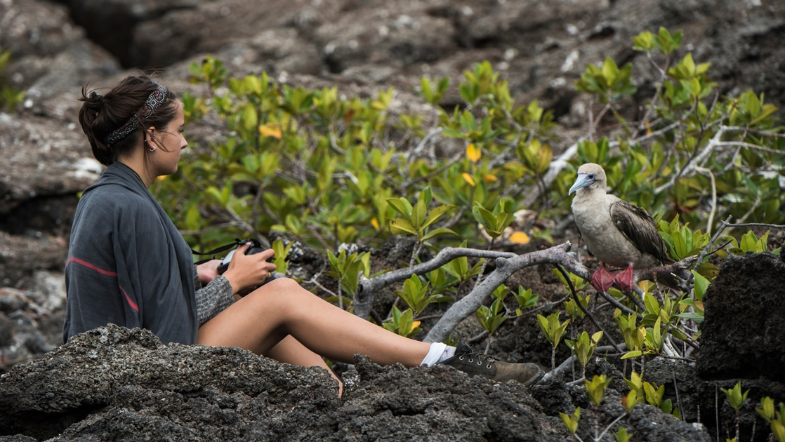 A female traveler sits on lava rock with camera in hand as a red footed booby bird perches on a low hanging mangrove tree in front of her.