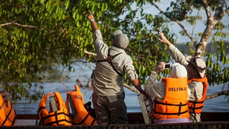 guide pointing up into the canopy while travelers look and take pictures on the delfin ii amazon river cruise