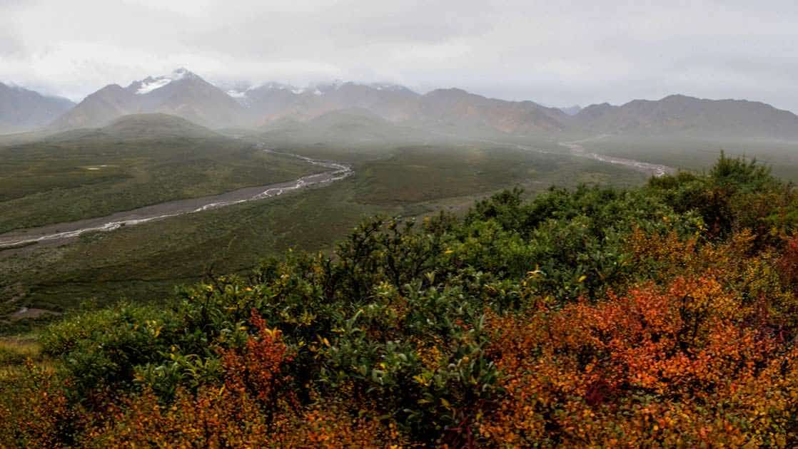 River flowing in denali national park in alaska with mountain ranges in the distance covered in clouds