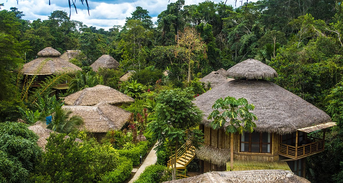 group of thatched roof suites in the lush green jungle of Ecuador land tour