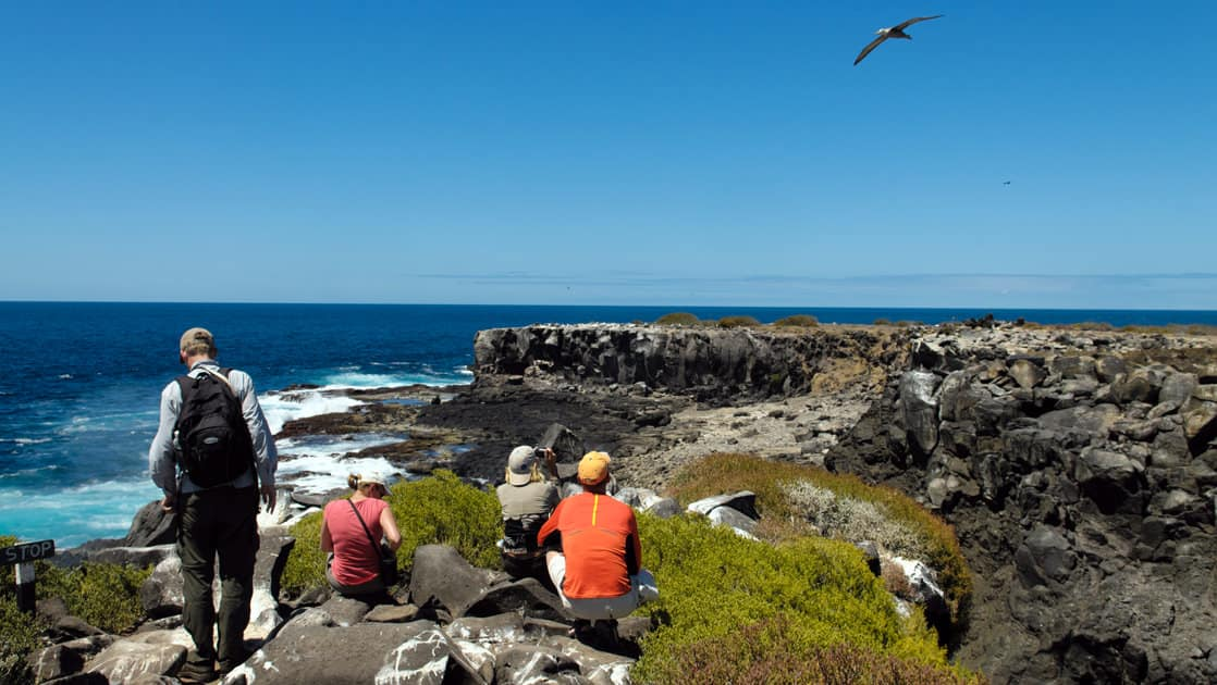 guests of the luxury cruise seaman journey walk and sit on a rocky bluff overlooking the ocean at the Galapagos islands while a bird flies in the blue sky