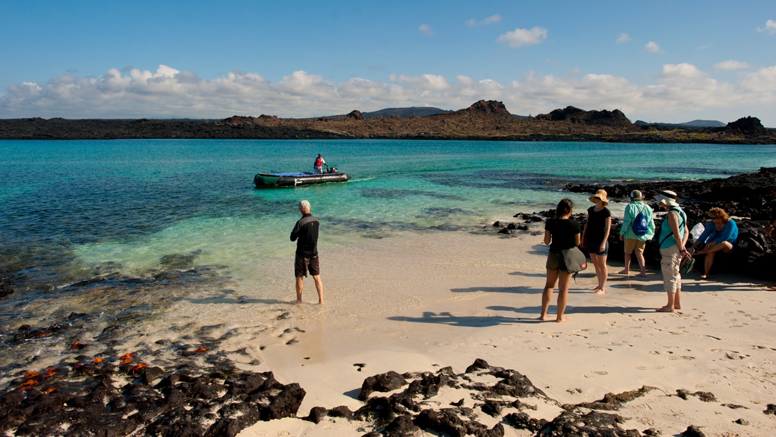 A group of Galapagos travelers stand on an islands sandy beach with black lava rock against crystal blue and teal ocean water beyond them.