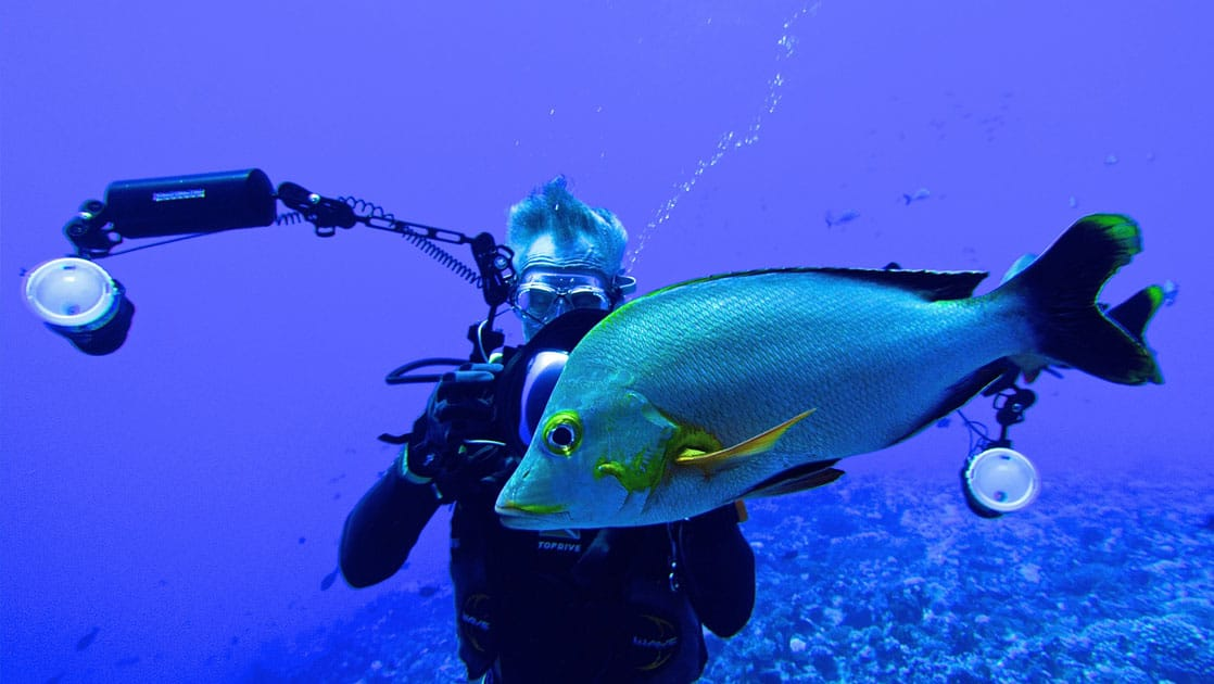 scuba diver taking a picture of a large fish with a high tech camera setup in french polynesia pacific islands