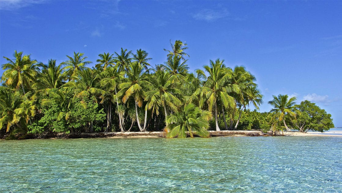 piece of land full of palm trees sticking out into crystalline waters of the pacific islands on a sunny day